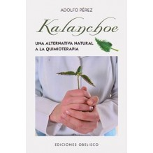 Kalanchoe  Una Alternativa Natural A La Quimioterapia