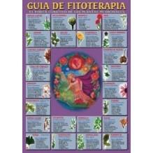 Ficha A-4 Guia De Fitoterapia
