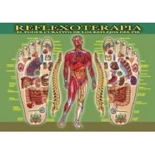 Ficha A-4 Reflexoterapia Del Pie