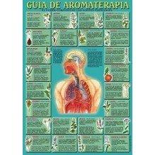 Ficha A-4 Guia De Aromaterapia