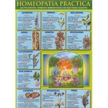 Ficha A-4  Homeopatia Practica