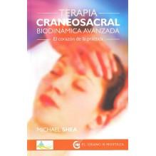 Terapia Craneosacral biodinámica avanzada