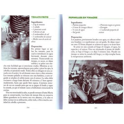 Phoenix journals pdf