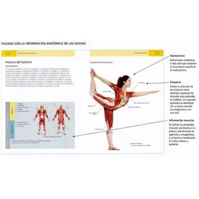 Anatomía del yoga. por Sally Parkes