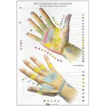 Reflexología de las manos- Lámina desplegable