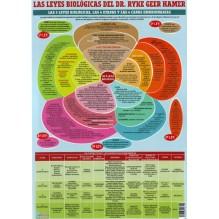 Ficha A4 plastificada Las leyes biologicas del Dr. Ryke Geer Hamer