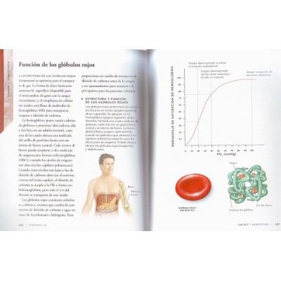 Anatomía fisiológica, por Prof. Ken Ashwell. Editorial: Librero