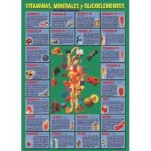 Ficha A-4 Vitaminas Minerales Y Oligoelementos
